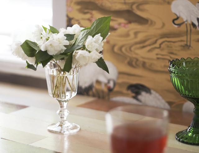 chersmin flower jasmin blommor vita